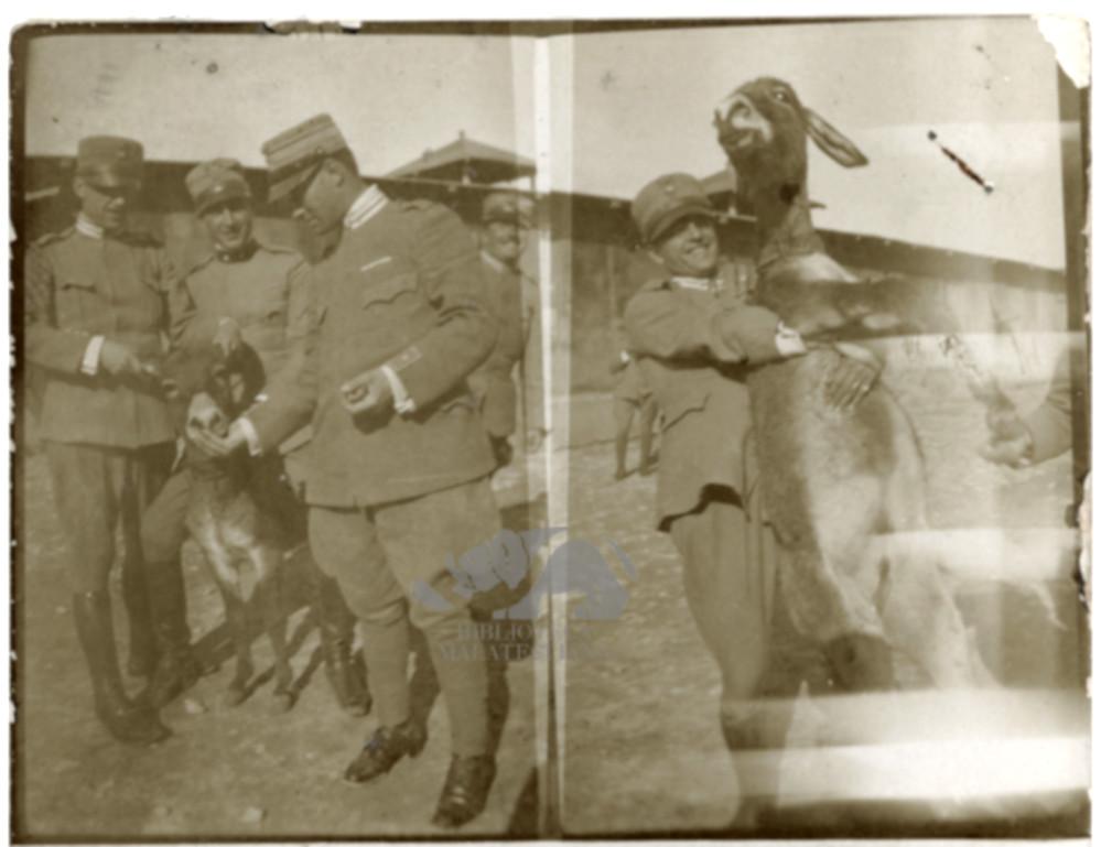 Nel 1917 con un asinello